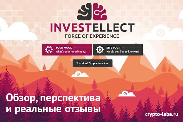 Investellect